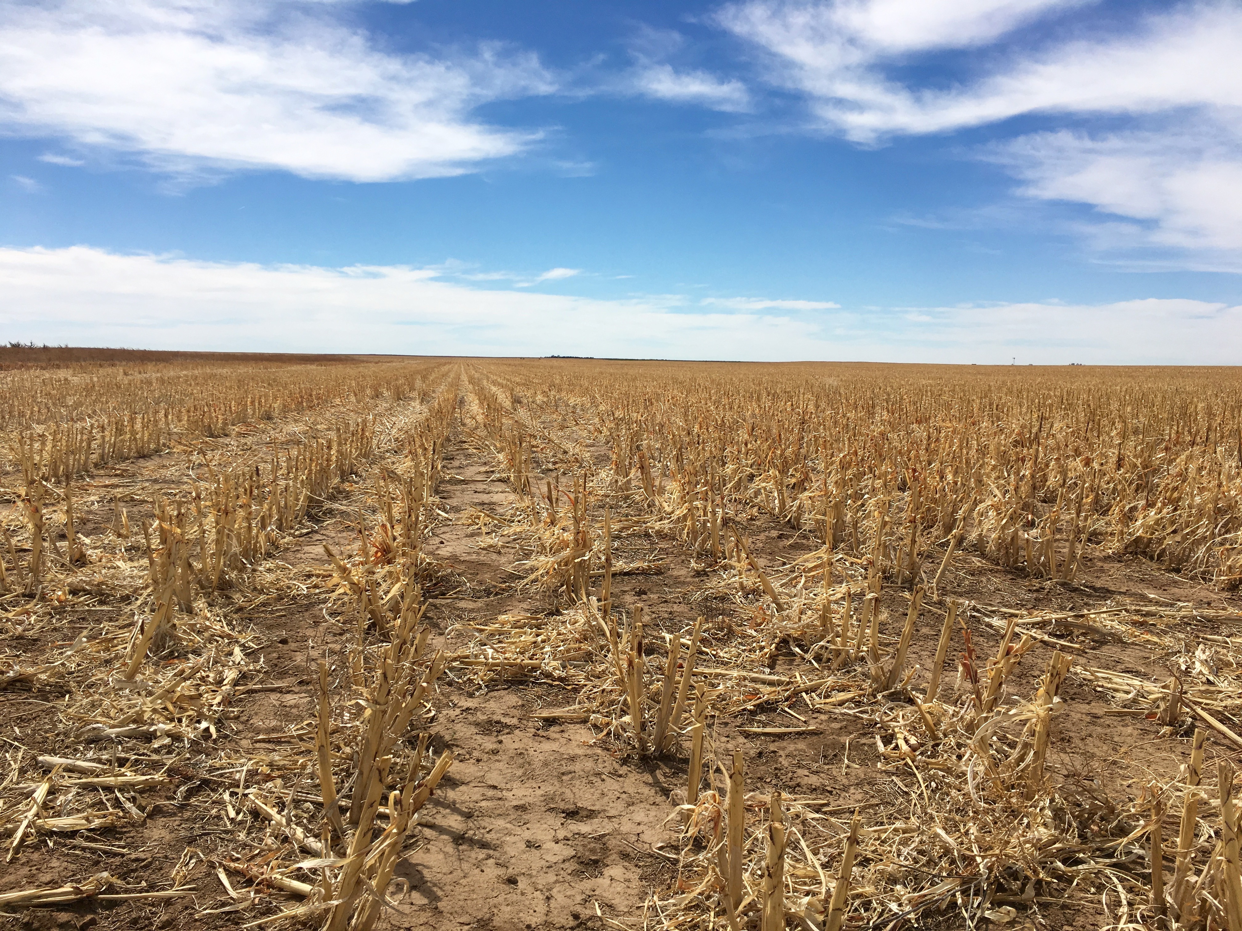 Baca County, Colorado Land for Sale
